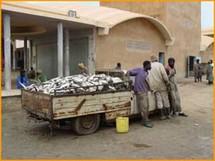 Afrique de l'ouest: le réchauffement climatique menace la pêche