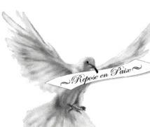 Le MPR présente ses condoléances à Boubacar Diagana et à toute la Section du MPR en France.
