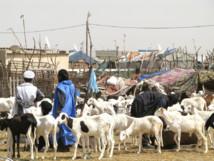 La Tabaski sera célébrée vendredi en Mauritanie