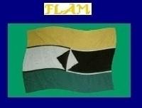 Communiqué des FLAM-Europe de l'Ouest