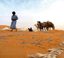 Point Afrique renonce à son vol mauritanien