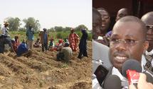 Sénégal:Parfum de scandale dans la vallée du fleuve Sénégal