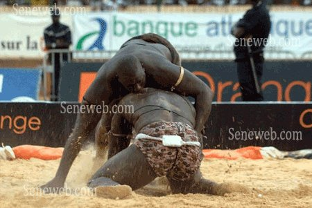 Sénégal/Lutte - Yékini triomphe de Gris Bordeaux et consolide sa suprématie (reportage photos)