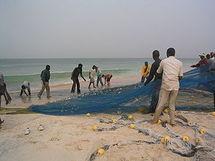Des journalistes mauritaniens formés à la protection de l'environnement