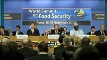 Sécurité Alimentaire en Afrique : La FAO tire la sonnette d'alarme