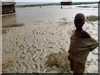 Appui italien à la sécurité alimentaire en Mauritanie
