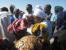 Une délégation de la commission africaine des Droits de l'Homme visite des sites de rapatriés