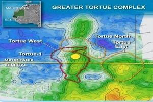 Sénégal / Mauritanie : BP choisit McDermott et BHGE pour les travaux FEED du champ Tortue / Ahmeyim