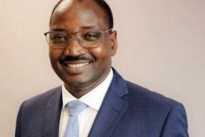 Propositions d'amendement sur le projet de loi sur la double nationalité / Par Diawara Issa Manséga, député